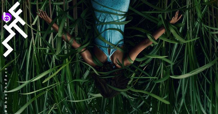 รีวิว In the Tall Grass